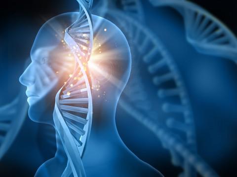 Paneles NGS de más de 200 genes en el entorno oncológico.