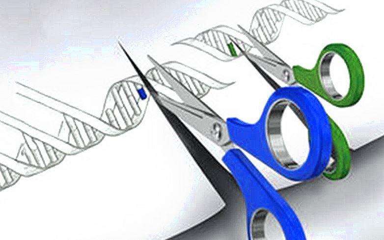 21.11.2016 CRISPR