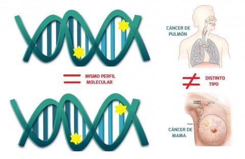 La diversidad genética en el cáncer cambia la dinámica de los ensayos clínicos