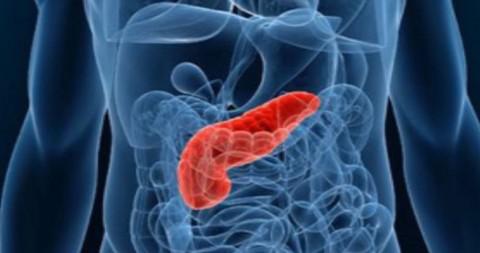 Nuevo impulso para el proyecto de medicina personalizada en cáncer de páncreas