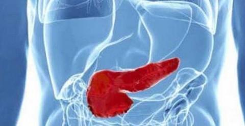 Investigadores españoles, en busca de la primera inmunoterapia para cáncer de páncreas