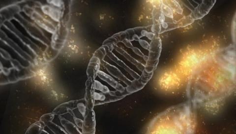 El perfil genómico afecta en el diagnóstico de la mitad de los cánceres raros