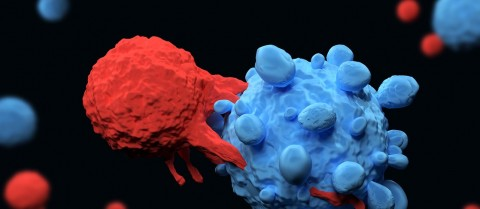La Inmunoterapia como un posible tratamiento en pacientes con Cáncer