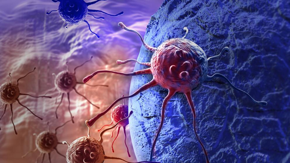 Una innovadora combinación de fármacos contra el cáncer.