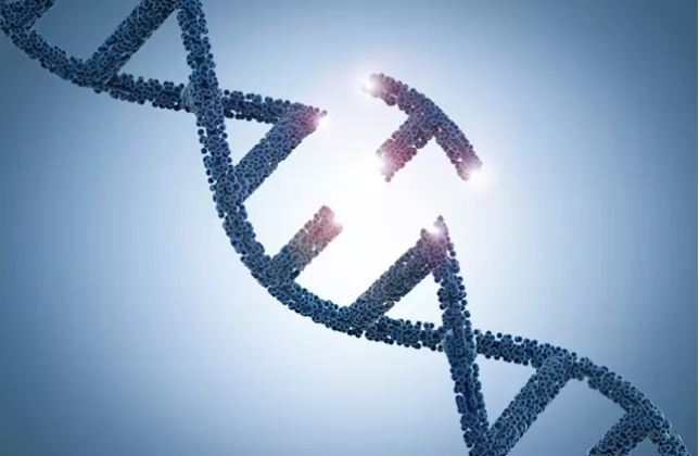 La genética fundamental para determinar el tratamiento de cáncer en la mujer.