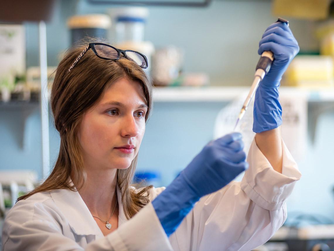 En busca del genoma de los tumores.