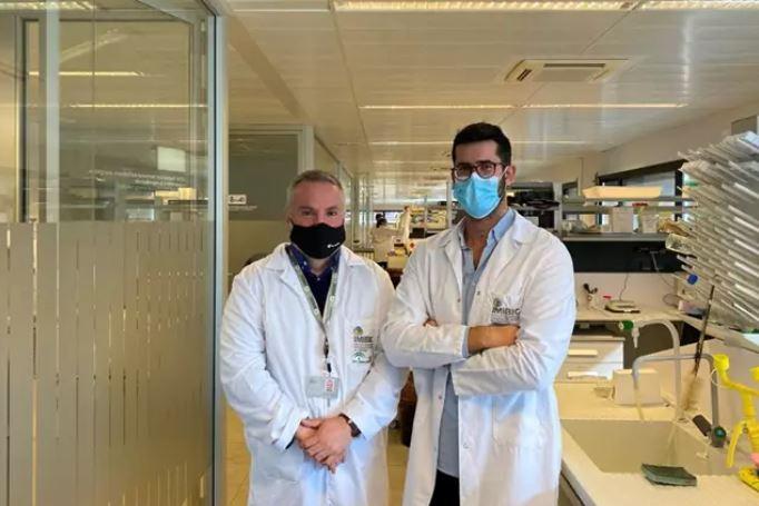 Descubren una nueva vía terapéutica contra el glioblastoma